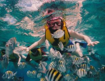 Flippers Adventures Destin FL